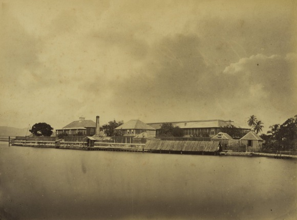 Jamaica before 1900 (9)