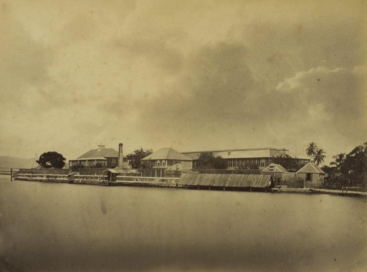 Jamaica before 1900 (9)